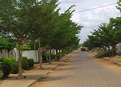 typical street at selected Location